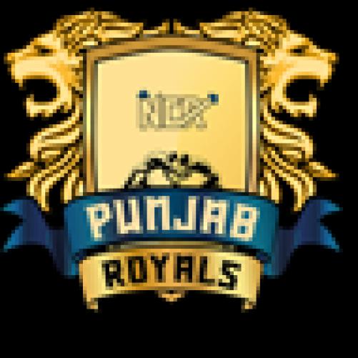 Pro Wrestling League: Haryana Hammers face Punjab Royals for top spot