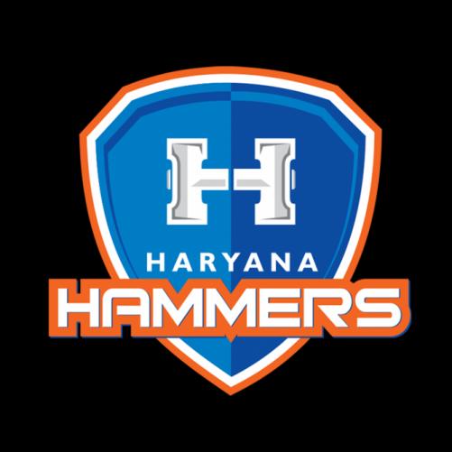 Pro Wrestling League: Haryana beat Punjab to maintain top spot